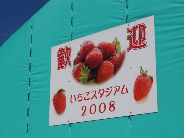 松伏いちごスタジアム2008